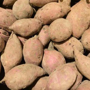 本場屋久島産・自然栽培安納芋