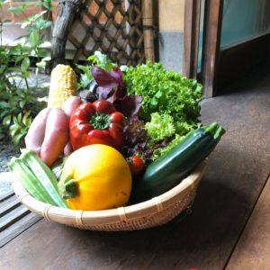 季節の旬野菜8種・オススメ加工品